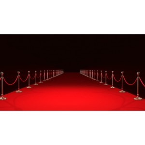 Red carpet 317,20 €